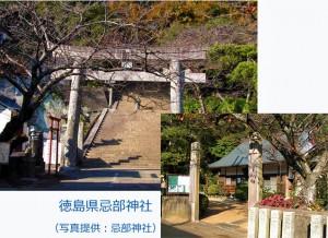 徳島県「忌部神社」