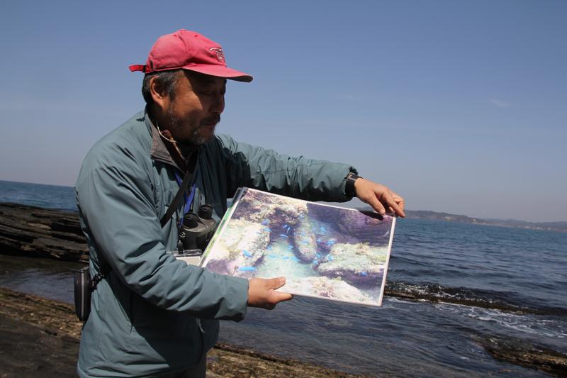 奥の海で観察できるサンゴを解説する竹内さん