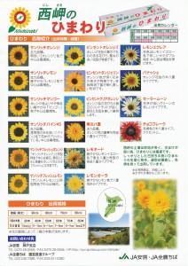 西岬ひまわりカタログ