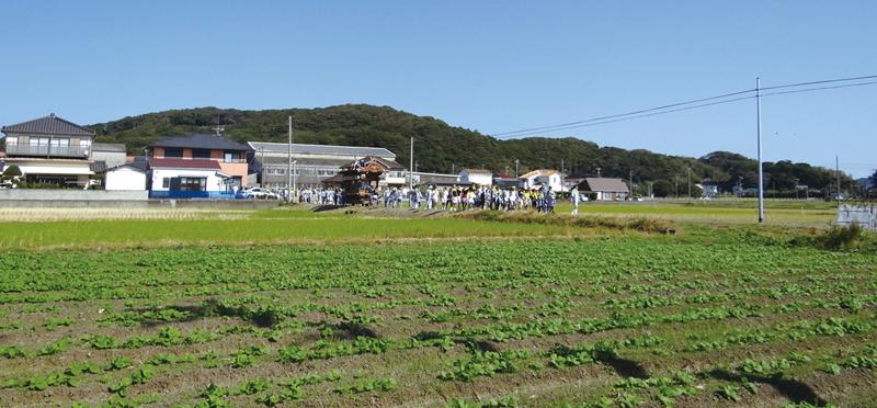 肥沃な田畑が広がる亀ヶ原の風景