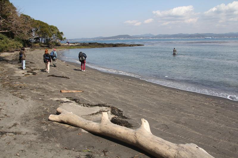 沖ノ島にてビーチコーミング