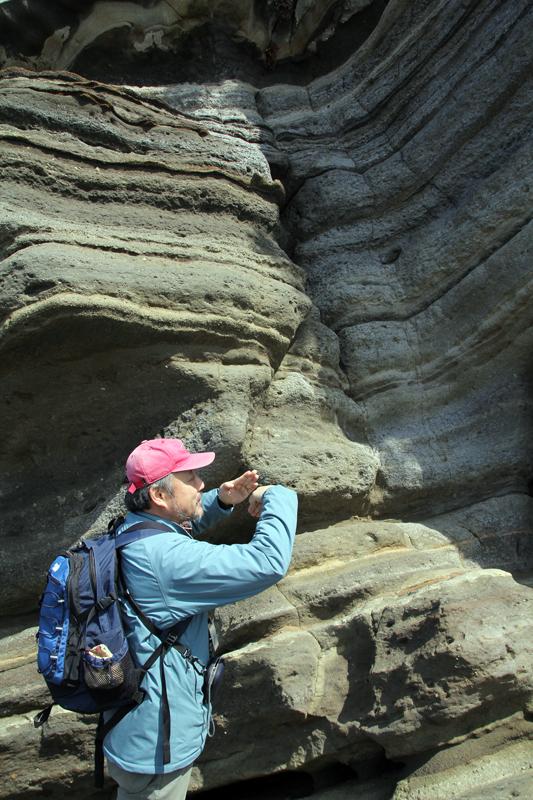 化石の入ったむきだしの断層