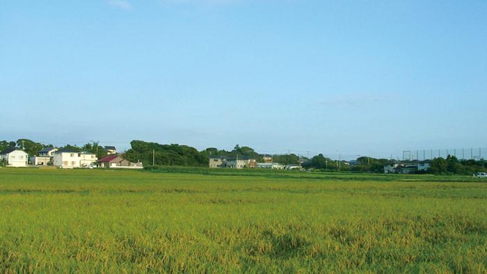 新興住宅地でありながらも田畑が広がる高井地区